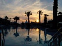 Las palmas del drama acercan a la piscina Fotos de archivo libres de regalías