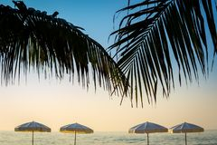Las palmeras blancas del parasol de playa y del coco en el huahin varan imagen de archivo libre de regalías