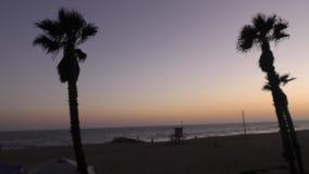 Las palmeras enmarcan un tiro determinado del sol en una playa de Newport almacen de metraje de vídeo
