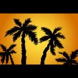 Las palmeras siluetean en la isla Vacaciones de verano en la puesta del sol tropical de la playa, salida del sol, con las palmera stock de ilustración