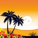 Las palmeras siluetean puesta del sol de la arena de las flores stock de ilustración