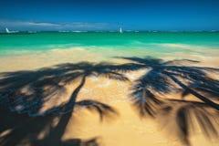 Las palmeras sombrean en la playa tropical Punta Cana, dominicano con referencia a Foto de archivo libre de regalías