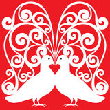 Las palomas blancas emparejan besar el modelo con un symb del corazón Fotos de archivo libres de regalías
