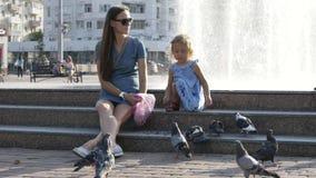 Las palomas de la calle de las alimentaciones de la madre y de la hija en el parque en el día de verano 4K se reducen metrajes