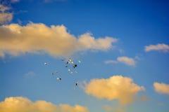 Las palomas que vuelan, cielo azul, blanco se nublan p6 Foto de archivo libre de regalías
