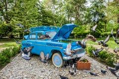 Las palomas vuelan sobre el coche de la flor Foto de archivo libre de regalías