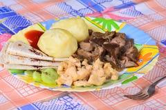 Las patatas hervidas con el pollo cortan pedazos y setas fritas Fotografía de archivo