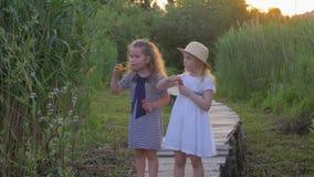 Las pequeñas novias lindas soplan las burbujas que se colocan en el puente de madera en naturaleza entre hierba verde almacen de video