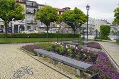 Las pequeñas rosas ajustan en el centro de Braga el 24 de abril de 2015 en Braga, Portugal Fotografía de archivo libre de regalías