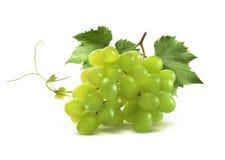 Las pequeñas uvas verdes agrupan y hojean aislado en blanco Imagen de archivo