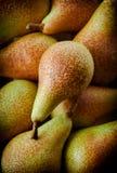 Las peras agrupan en fondo oscuro Fotos de archivo