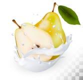 Las peras amarillas maduras en una leche salpican en un fondo transparente stock de ilustración