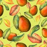 Las peras modelan en fondo amarillo Imagen de archivo