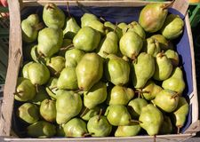 Las peras verdes apilan en venta en una caja de madera, en luz del sol fruta sana del otoño fotografía de archivo