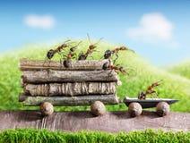 Las personas de hormigas llevan registros con el coche del rastro, trabajo en equipo Imagen de archivo