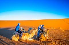 Las personas que hacen el camello emigran en el desierto de Marruecos al lado del ` Hamid de M Fotografía de archivo libre de regalías