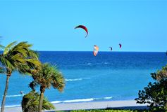 Las personas que practica surf de la cometa disfrutan de condiciones de calidad mundial de Boca Raton, playa de la Florida Foto de archivo
