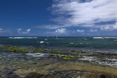 Las personas que practica surf del viento llenan la bahía en la bahía de Hookipa Fotos de archivo libres de regalías