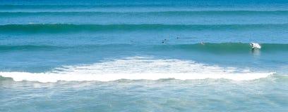 Las personas que practica surf en una resaca adaptan Marruecos 3 Imágenes de archivo libres de regalías