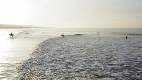 Las personas que practica surf entran en el agua en el amanecer en California almacen de metraje de vídeo
