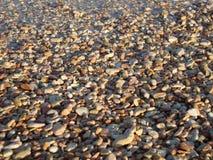 Las piedras de la ronda en la costa imágenes de archivo libres de regalías