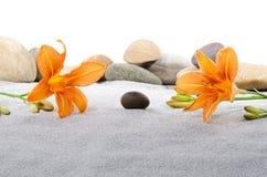 Las piedras del guijarro y el lirio anaranjado florece en la arena gris Imagenes de archivo