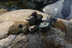 Las piedras del río del agua fluyen las vacaciones de verano del poder Foto de archivo libre de regalías