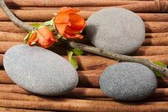 Las piedras del río oval Fotografía de archivo