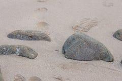 Las piedras en textura del arena de mar de la arena del primer de piedra del fondo equiparan Fotografía de archivo libre de regalías