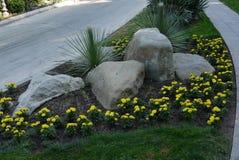 Las piedras que mienten en una cama de flor con el crecimiento de flores amarillo hermoso alrededor de ellos con las calzadas a c Imagenes de archivo