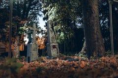 Las piedras sepulcrales viejas arruinan en el bosque del autmn, cementerio por la tarde, noche, luz de luna, foco selectivo, back fotografía de archivo