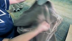 Las pieles animales están consiguiendo alisadas por un experto femenino almacen de video