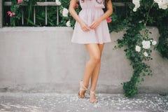 Las piernas de la muchacha con los pétalos color de rosa Imagenes de archivo