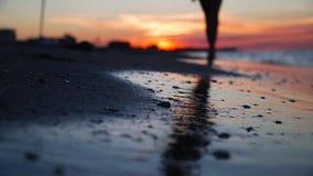 Las piernas de la muchacha que caminan en la playa en la puesta del sol almacen de metraje de vídeo