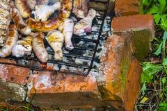 Las piernas de pollo de las costillas de cerdo de la salchicha en la parrilla asan a la parilla el horno del ladrillo Foto de archivo