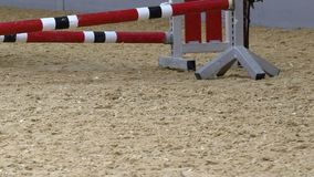 Las piernas del caballo se cierran para arriba Entrenamiento de salto en la cámara lenta