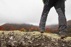 Las piernas del caminante en tronco del abedul admiran el landsc colorido otoñal del bosque Imagen de archivo libre de regalías