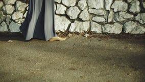 Las piernas o los pies en un vestido apacible vienen, el caminar de la hembra o de la mujer y libertad de la sensación almacen de metraje de vídeo