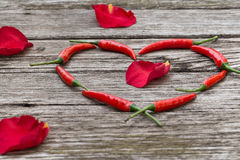 Las pimientas de chile rojo en un corazón forman con los rosa-pétalos Imagen de archivo libre de regalías