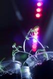 Las pimientas del bebé debajo de un LED crecen la lámpara imágenes de archivo libres de regalías