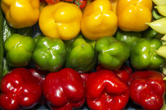 Las pimientas dulces verdes y amarillas rojas orgánicas recientemente escogidas en mercado atascan Imagen de archivo