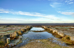 Las piscinas y los penachos congelados de la hierba en Morecambe aúllan. Imagen de archivo libre de regalías