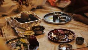 Las placas con especies indias se colocan en el piso almacen de metraje de vídeo