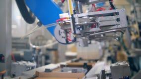 Las placas del cartón están siendo vueltas a poner por el equipo de la fábrica Equipo moderno de la f?brica almacen de metraje de vídeo