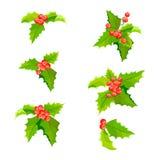 Las plantas de la Navidad del muérdago fijaron con las hojas y la fruta Colección de la decoración de la baya del acebo Vector Foto de archivo