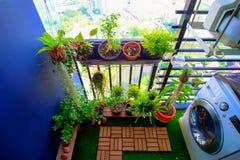 Las plantas naturales en los potes de la ejecución en el balcón cultivan un huerto Fotos de archivo libres de regalías