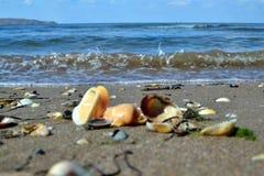 Las playas del mar de Azov Foto de archivo libre de regalías