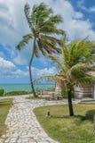 Las playas-Pontal brasileñas hacen Coruripe, Alagoas Imagen de archivo libre de regalías