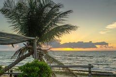Las playas-Pontal brasileñas hacen Coruripe, Alagoas Fotografía de archivo