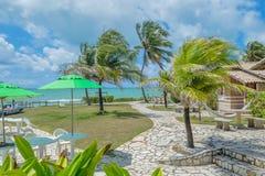 Las playas-Pontal brasileñas hacen Coruripe, Alagoas Fotografía de archivo libre de regalías